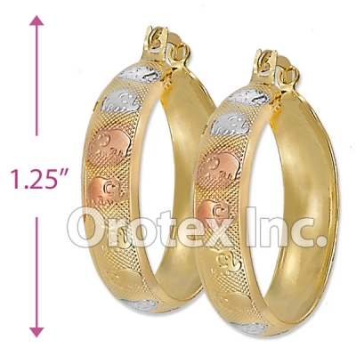 EH054 Gold Layered Tri-color Hoop Earrings