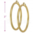 102009 Gold Layered Hoop Earrings