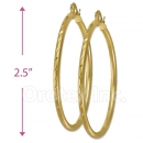103100 Gold Layered Hoop Earrings