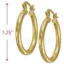 103102 Gold Layered Hoop Earrings