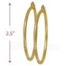 103204 Gold Layered Hoop Earrings