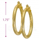 104007 Gold Layered Hoop Earrings