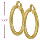 104023 Gold Layered Hoop Earrings