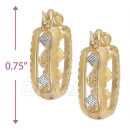 110041 Gold Layered Tri-color Hoop Earrings