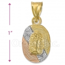 CH33-7  Gold Layered Tri-color Guadalupe Charm