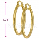 102007 Gold Layered Hoop Earrings
