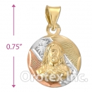 CH26-21 Gold Layered Tri-Color Charm