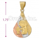 CL70B Gold Layered Tri-color Charm